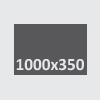 1000x350