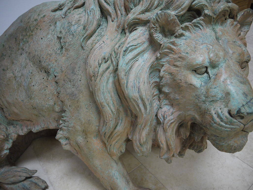 LIONS 5s