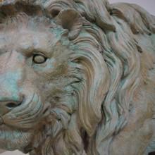 lions 4s