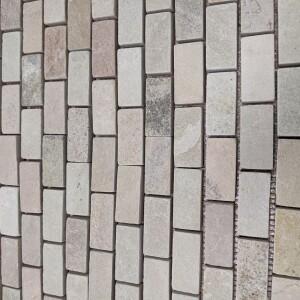 JURASSIC 2x1 mosaic close SMALL
